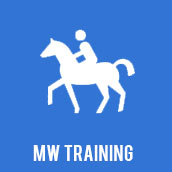 MW Training