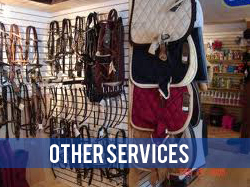 Other Equestrian Services